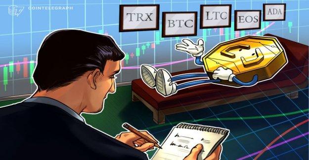 Overview of the Top 5 crypto-Performer: TRON, Bitcoin, Litecoin, EOS, Cardano