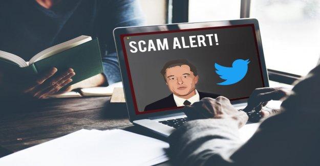Twitter: Fake Accounts, Elon Musk's Scam Bitcoin