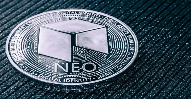 NEO-Bug: No to the theft of Token