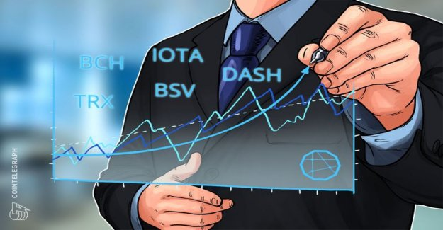 Top 5 crypto-Performer: Bitcoin, Cash, IOTA, TRON, Bitcoin, SV, DASH