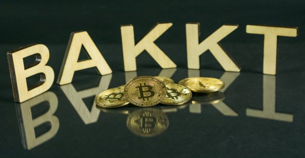Bakkt: Bitcoin exchange collects 180 million US dollars from Microsoft, BCG & co.