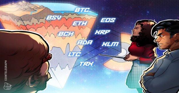 Rate analysis 2. January: Bitcoin, Ethereum, Ripple, Bitcoin, Cash, EOS, Stellar, Litecoin, Bitcoin, SV, TRON, Cardano