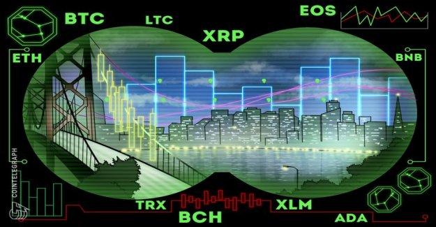 Rate analysis, 20. February: Bitcoin, Ethereum, Ripple, EOS, Litecoin, Bitcoin, Cash, Stellar, Tron, Binance Coin, Cardano