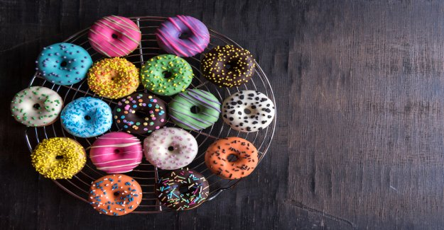 Anyone can be an Investor: the Berlin-based Bitcoin Start-up Donut and a collects 1.8 million US dollars