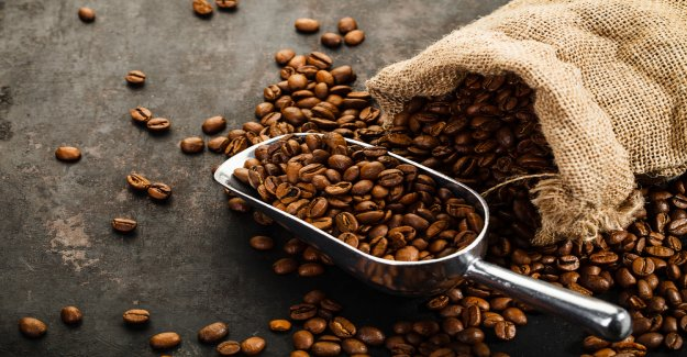 India: coffee-the Supply Chain depends on the Blockchain