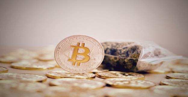 No Coins for Cannabis: HSBC's purchase of Bitcoin denied and will freeze account