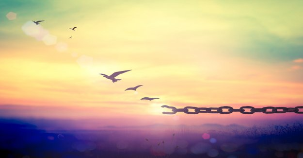 Ethfinex emancipated from Bitfinex – new focus on DeFi