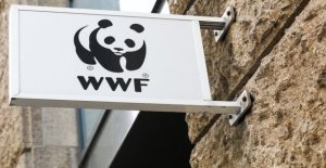 OpenSC: More transparency in the consumer? WWF and BCG, and making it possible