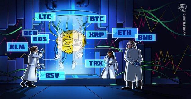Rate analysis, 8. February: Bitcoin, Ripple, Ethereum, Litecoin, EOS, Bitcoin, Cash, Tron, Stellar, Binance Coin, Bitcoin SV