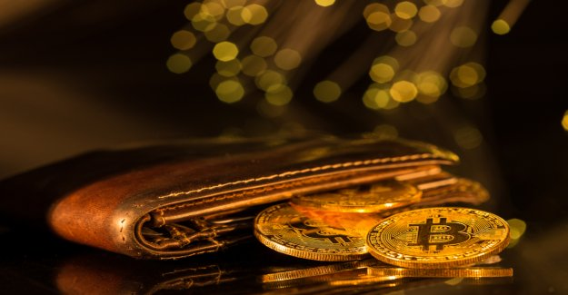 The Hodl-Guide: 5 types of Bitcoin Wallets that you should know