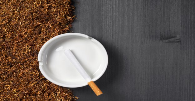 In the fight against black-market cigarettes: tobacco giant Phillip Morris relies on Blockchain solutions