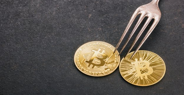 Bitcoin Cash (BCH): Hard Fork with a Schnorr signature, for the time being, without MultiSig