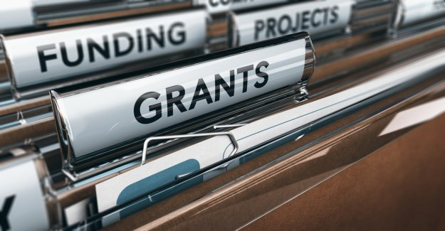 IOTA News: Foundation, distributed developer-scholarships
