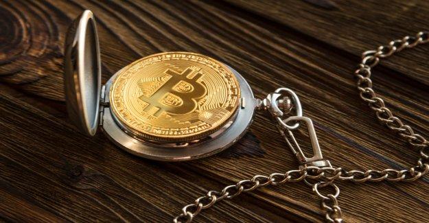 Ripple head is long on Bitcoin: The freedom of speech ECHO