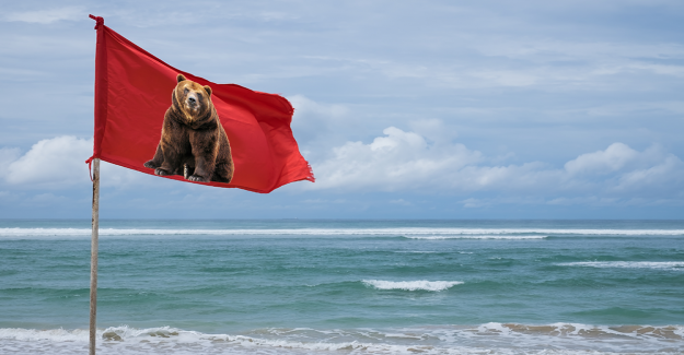Bitcoin price and Market analysis: signs for bear flag spotted