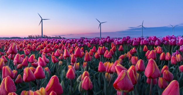 Experts Vervroeg klimaatinvesteringen to the economic crisis, and to prevent the