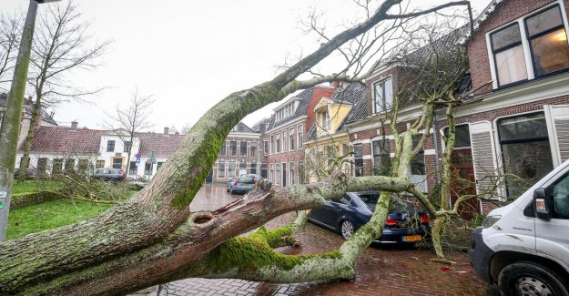 More and more claims for insurance companies due to extreme weather conditions