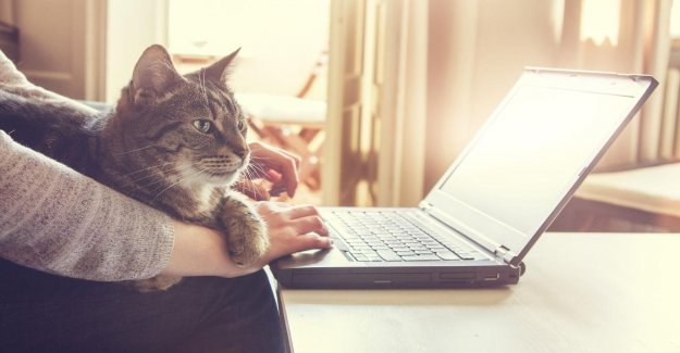 NUjij about working from home: No useless meetings to have more free time