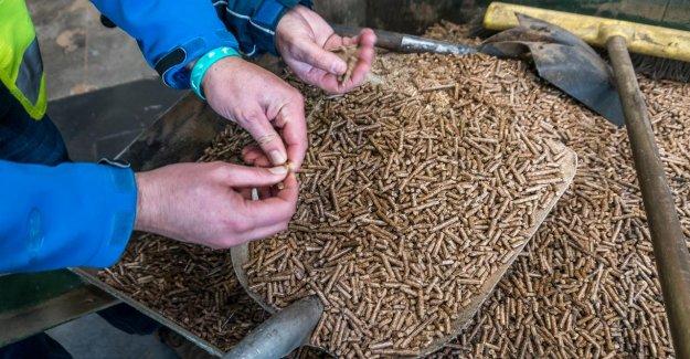 Stop with the biomass takes klimaatdoelen in danger