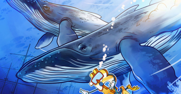 Bitcoin whale clusters Shield 3 Degrees in the Brief term to Maintain the bull trend intact