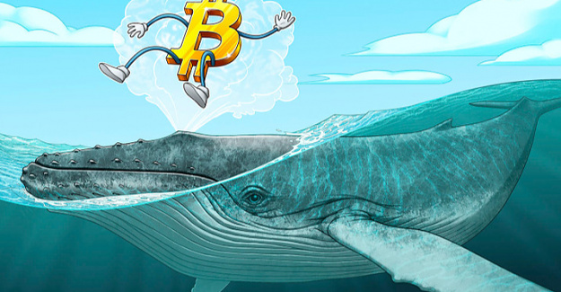 Bitcoin technicals sour as Cost Drops Beneath $54K and 2 Crucial whale clusters