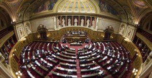 Youth employment : the Senate voted...